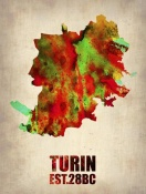 NAXART Studio - Turin Watercolor Poster