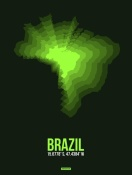 NAXART Studio - Brazil Radiant Map 2
