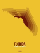 NAXART Studio - Florida Radiant Map 3