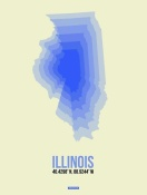 NAXART Studio - Illinois Radiant Map 1