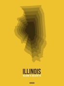 NAXART Studio - Illinois Radiant Map 3