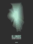 NAXART Studio - Illinois Radiant Map 4