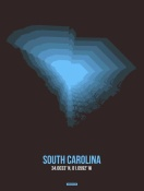 NAXART Studio - South Carolina Radiant Map 5