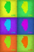 NAXART Studio - Illinois Pop Art Map 1