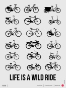 NAXART Studio - Life is a Wild Ride Poster 1