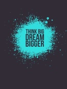 NAXART Studio - Think Big Dream Bigger 2