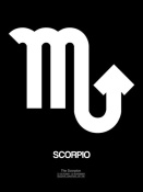 NAXART Studio - Scorpio Zodiac Sign White