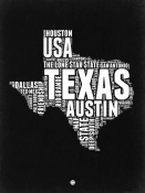 NAXART Studio - Texas Black and White Map