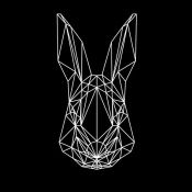 NAXART Studio - Rabbit on Black