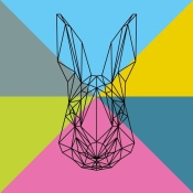 NAXART Studio - Party Rabbit