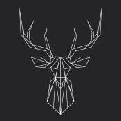 NAXART Studio - Deer Polygon