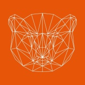 NAXART Studio - Orange Bear Polygon