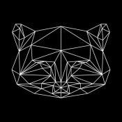 NAXART Studio - Black Raccoon Polygon