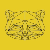 NAXART Studio - Yellow Raccoon Polygon