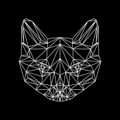 NAXART Studio - Black Cat Polygon