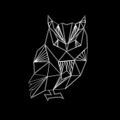 NAXART Studio - Owl Polygon