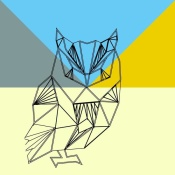 NAXART Studio - Party Owl