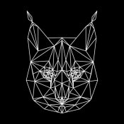 NAXART Studio - Bobcat Polygon1