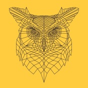 NAXART Studio - Yellow Owl Mesh