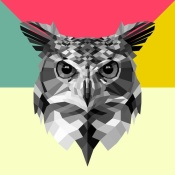 NAXART Studio - Owl Head