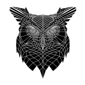 NAXART Studio - Black Owl Head Mesh