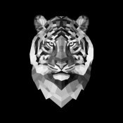 NAXART Studio - Tiger Head