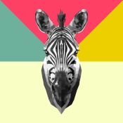 NAXART Studio - Party Zebra Head