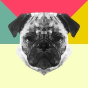 NAXART Studio - Party Pug