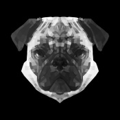 NAXART Studio - Pug Head