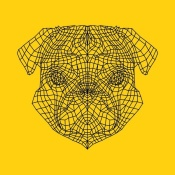 NAXART Studio - Pug Head Yellow Mesh