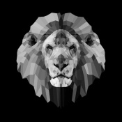 NAXART Studio - Lion Head