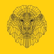 NAXART Studio - Lion Head Yellow Mesh