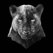 NAXART Studio - Black Panther