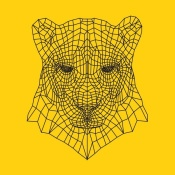 NAXART Studio - Panther Head Yellow Mesh