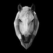 NAXART Studio - Horse Head