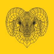 NAXART Studio - Ram Head Yellow Mesh