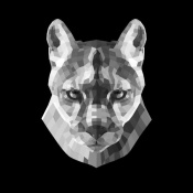 NAXART Studio - Mountain Lion Head