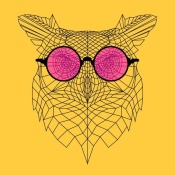NAXART Studio - Owl in Pink Glasses