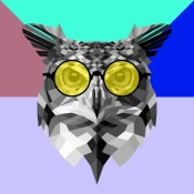 NAXART Studio - Owl in Yellow Glasses