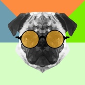 NAXART Studio - Party Pug in Yellow Glasses