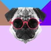 NAXART Studio - Party Pug in Pink Glasses