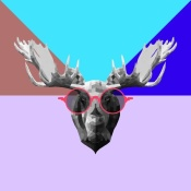 NAXART Studio - Party Moose in Glasses