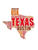 NAXART Studio - Texas Word Cloud Map