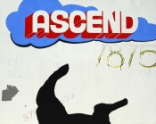 NAXART Studio - Ascend